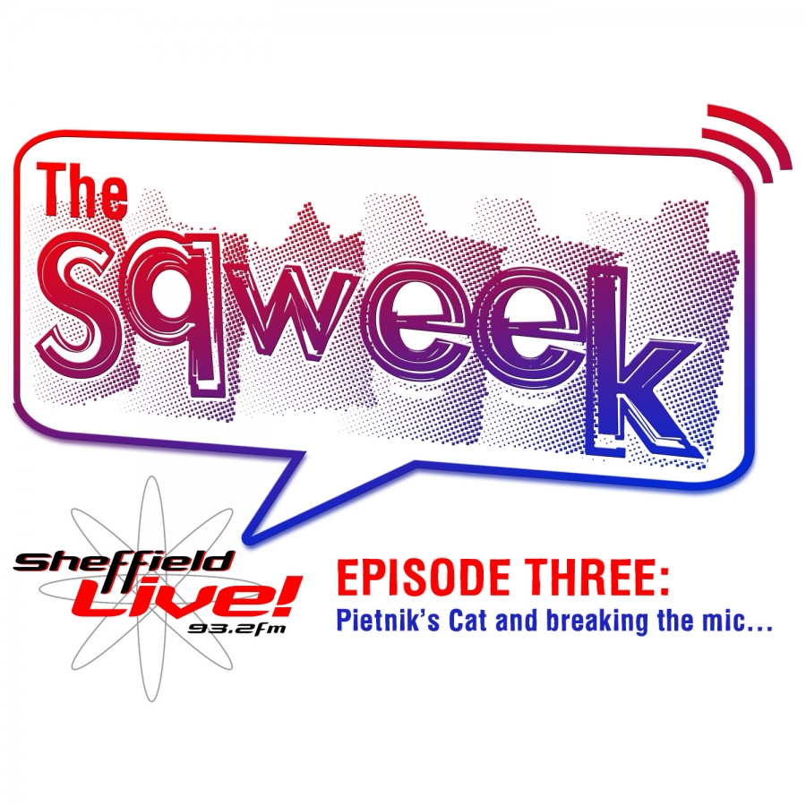 The Sqweek Episode 3: Pietnik's Cat and Breaking the mic